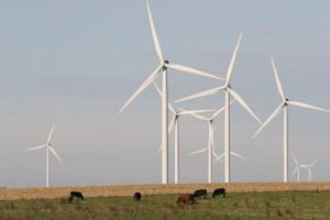 wind_turbine_lg